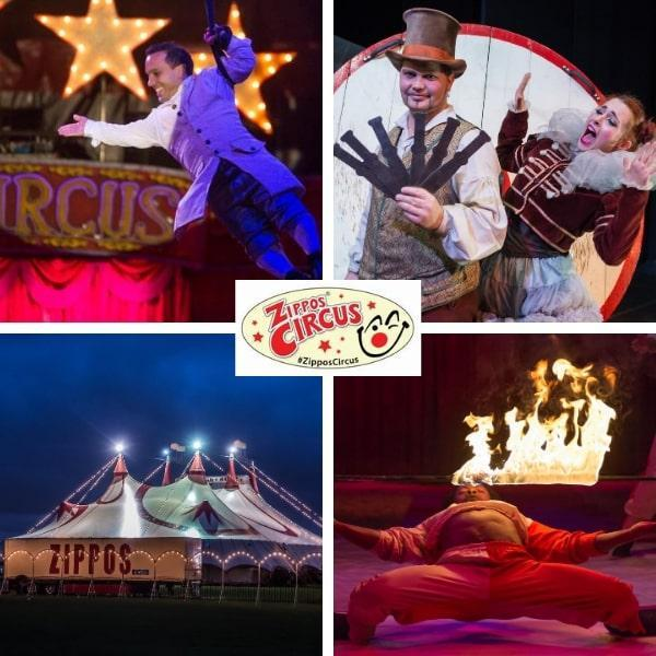 Win VIP Ringside Tickets to Zippo's Circus